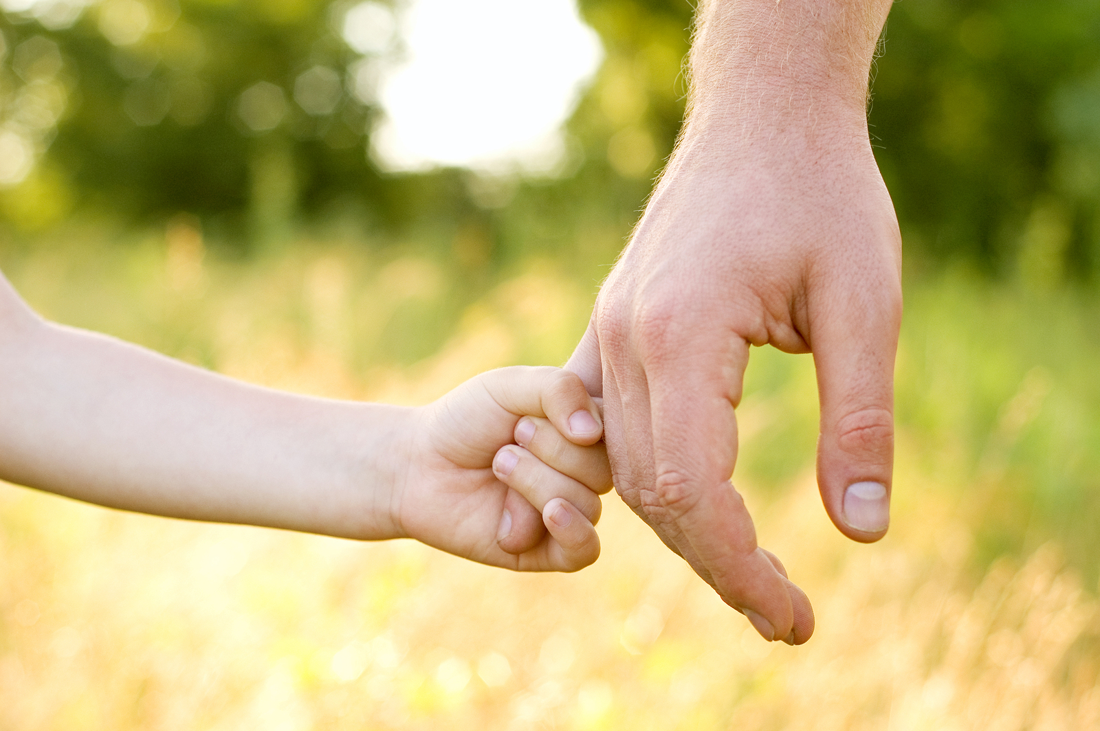 bigstock-trust-family-hands-of-child-so-27258686